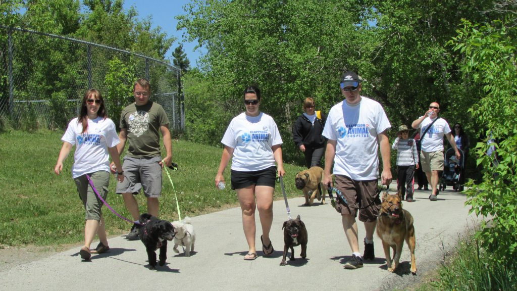 Stride for Strays participants