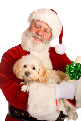 Santa holding a dog