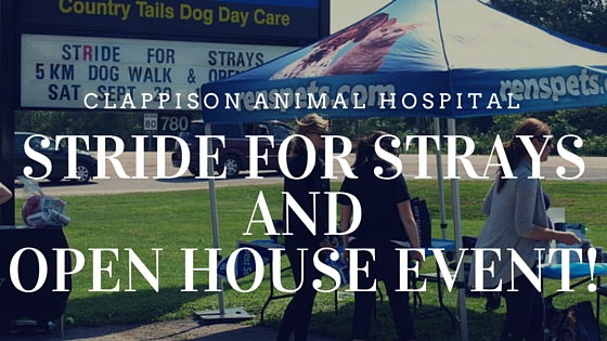 Clappison Animal Hospital exterior with Stride for Strays and Open House Event text overlay