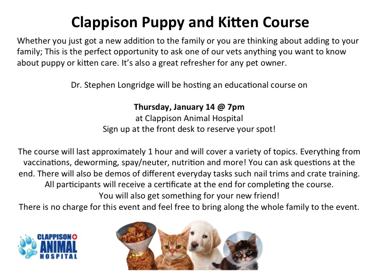 Clappison Puppy and Kitten Course event poster