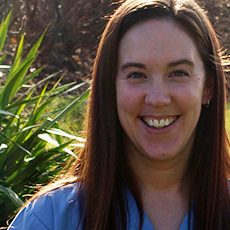 Laurie Stevenson Registered Veterinarian Technician at Clappison Animal Hospital