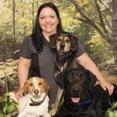 Amy Hanchiruk Animal Care Assistant from Clappison Animal Hospital