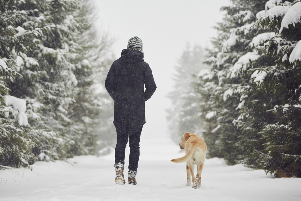 Dog and owner walking in the snow